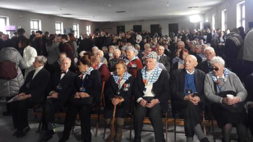 2019_01_27_Auschwitz_wolontariusze_f_Marta_Chrapczynska (4)